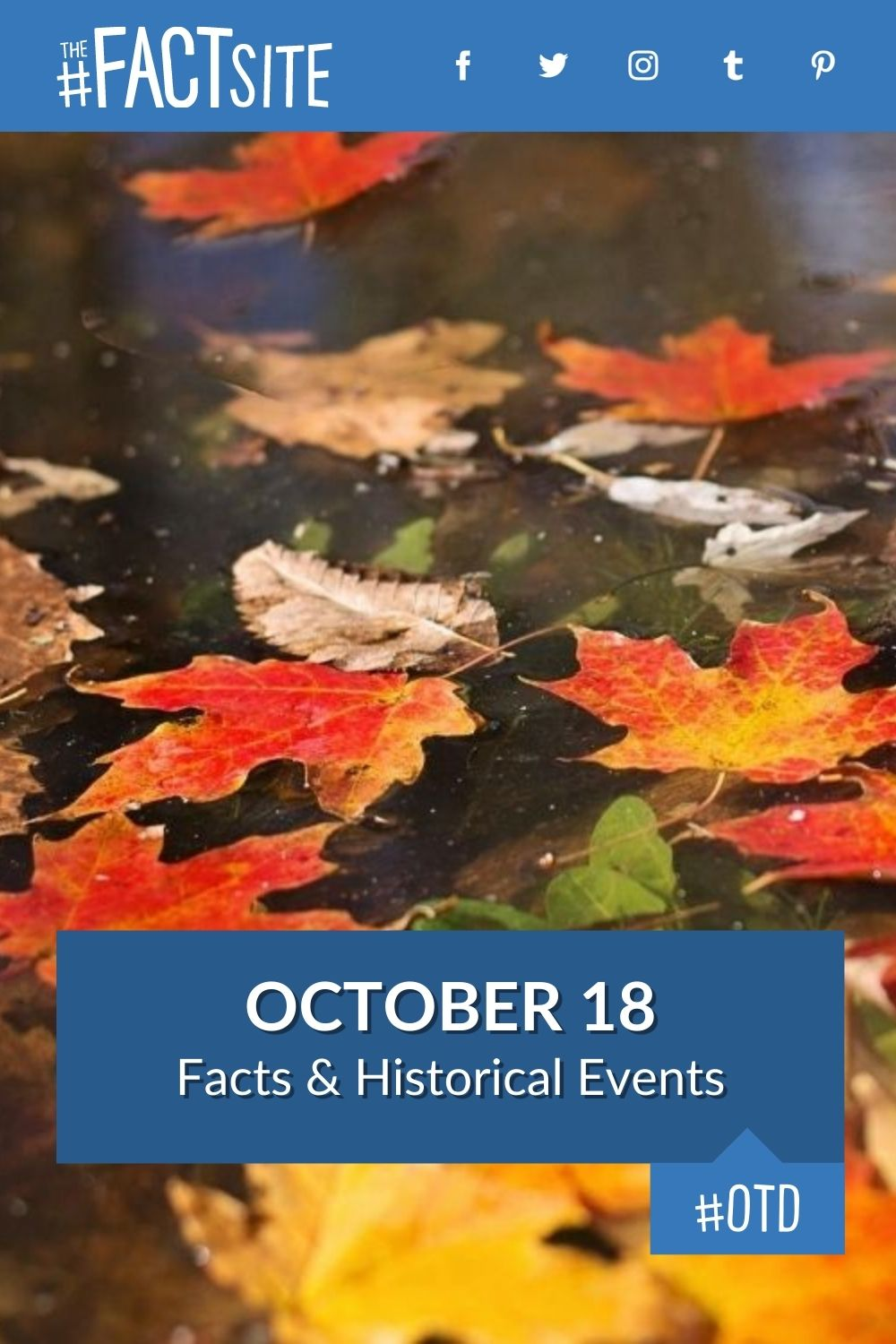 Facts & Historic Events That Happened on October 18