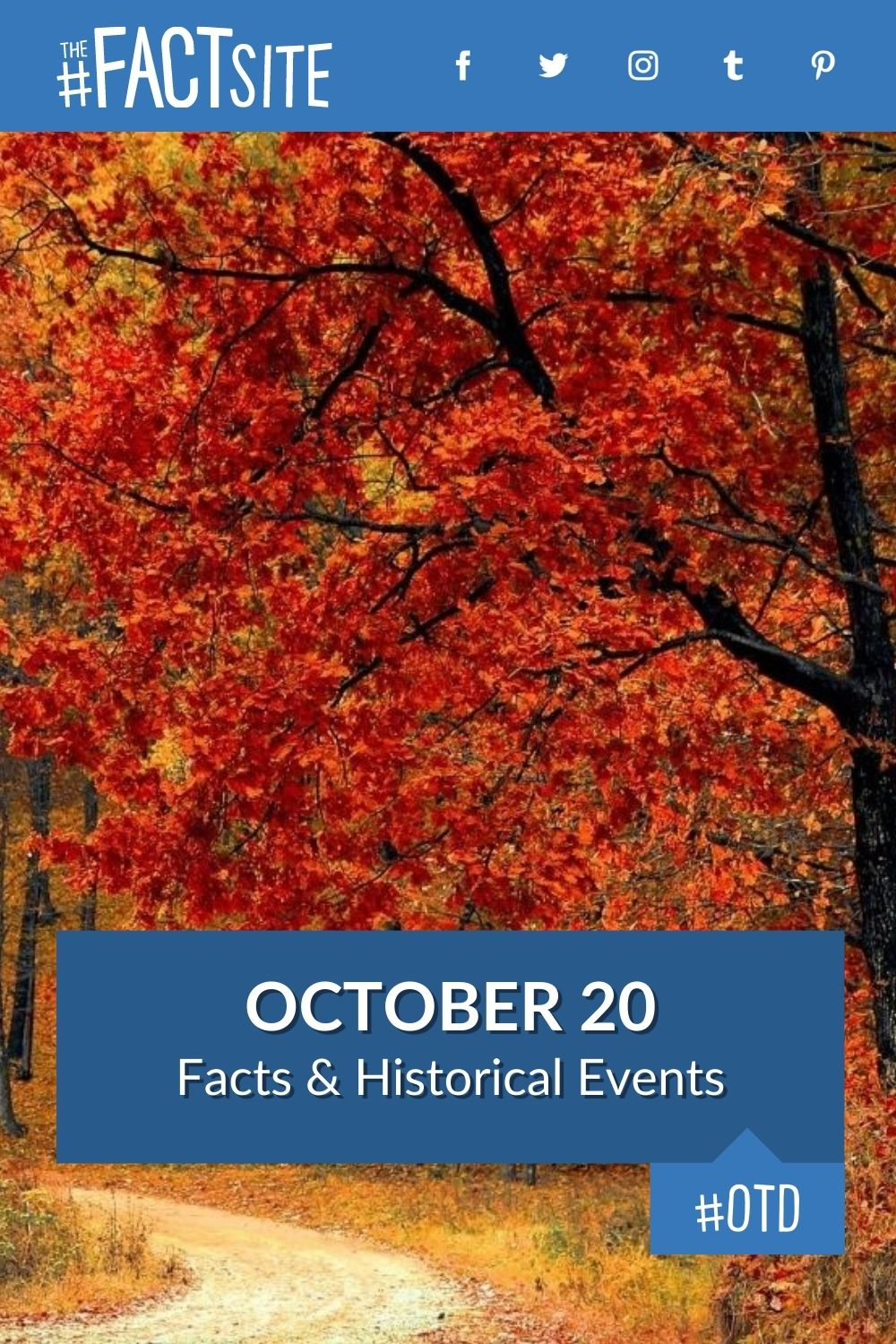 Facts & Historic Events That Happened on October 20
