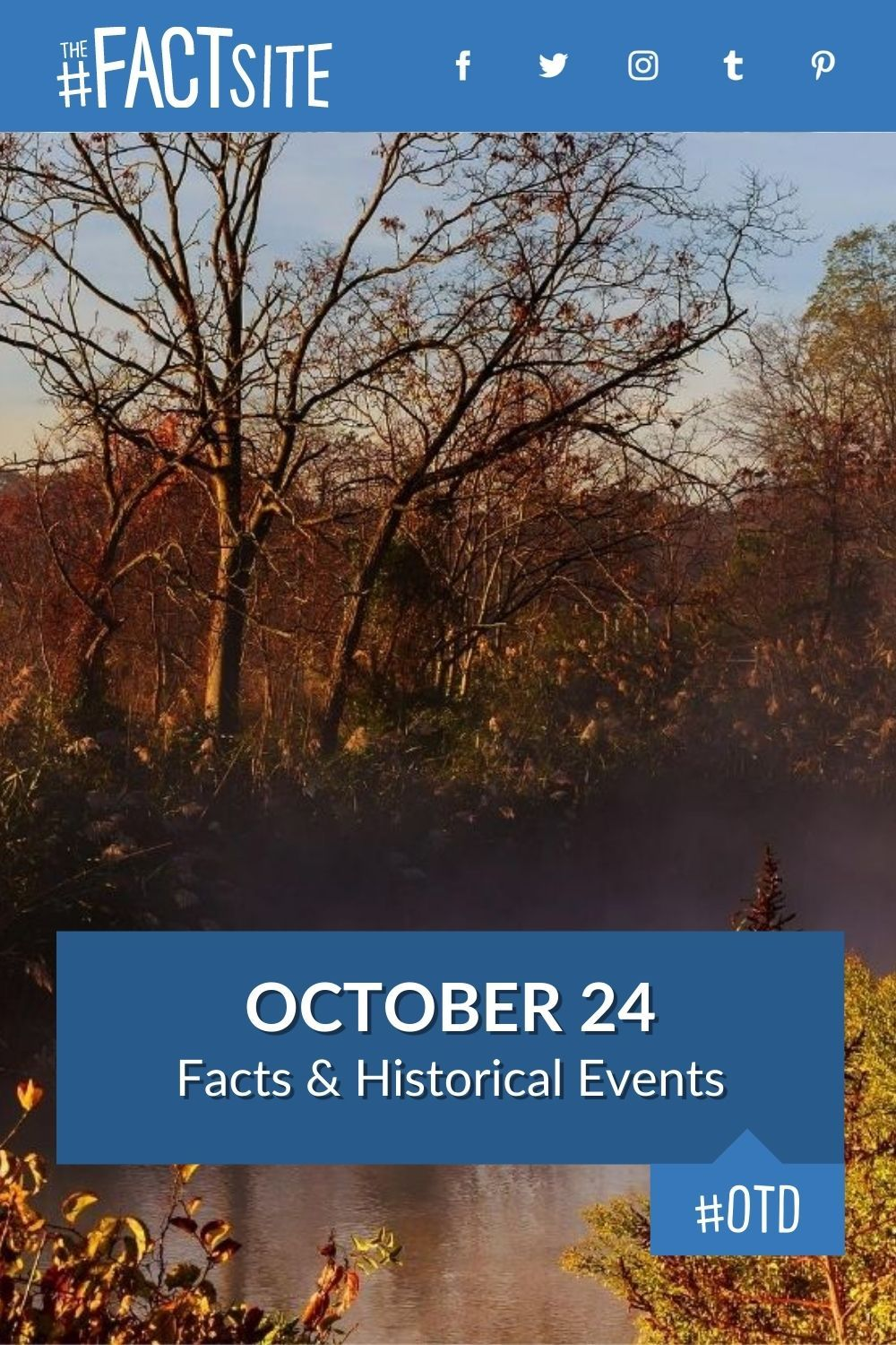 Facts & Historic Events That Happened on October 24