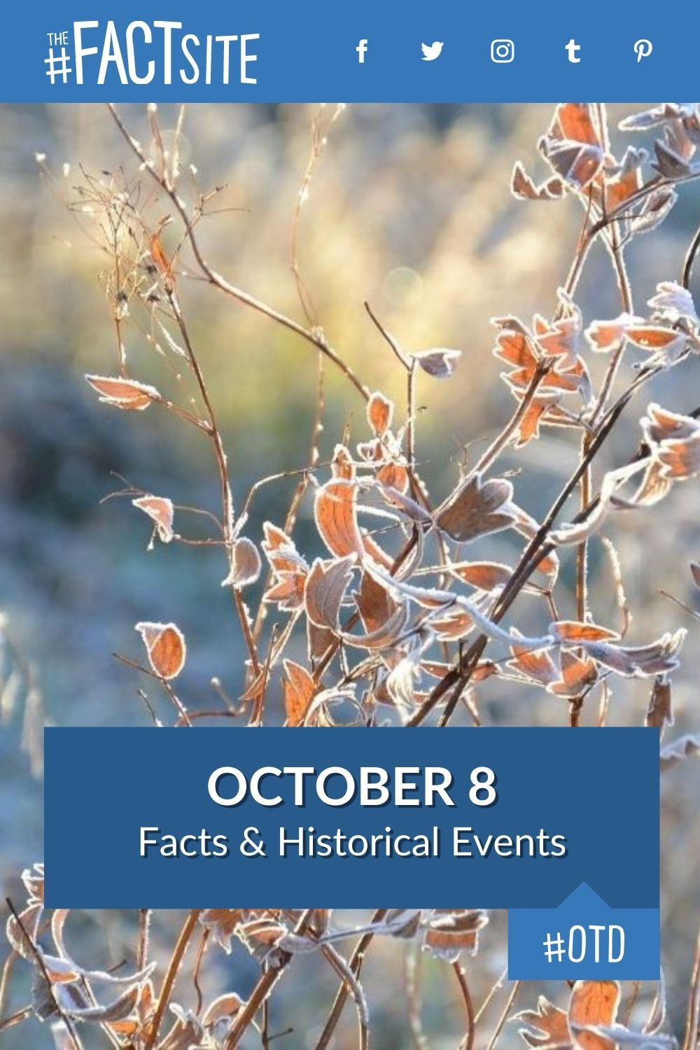 Facts & Historic Events That Happened on October 8