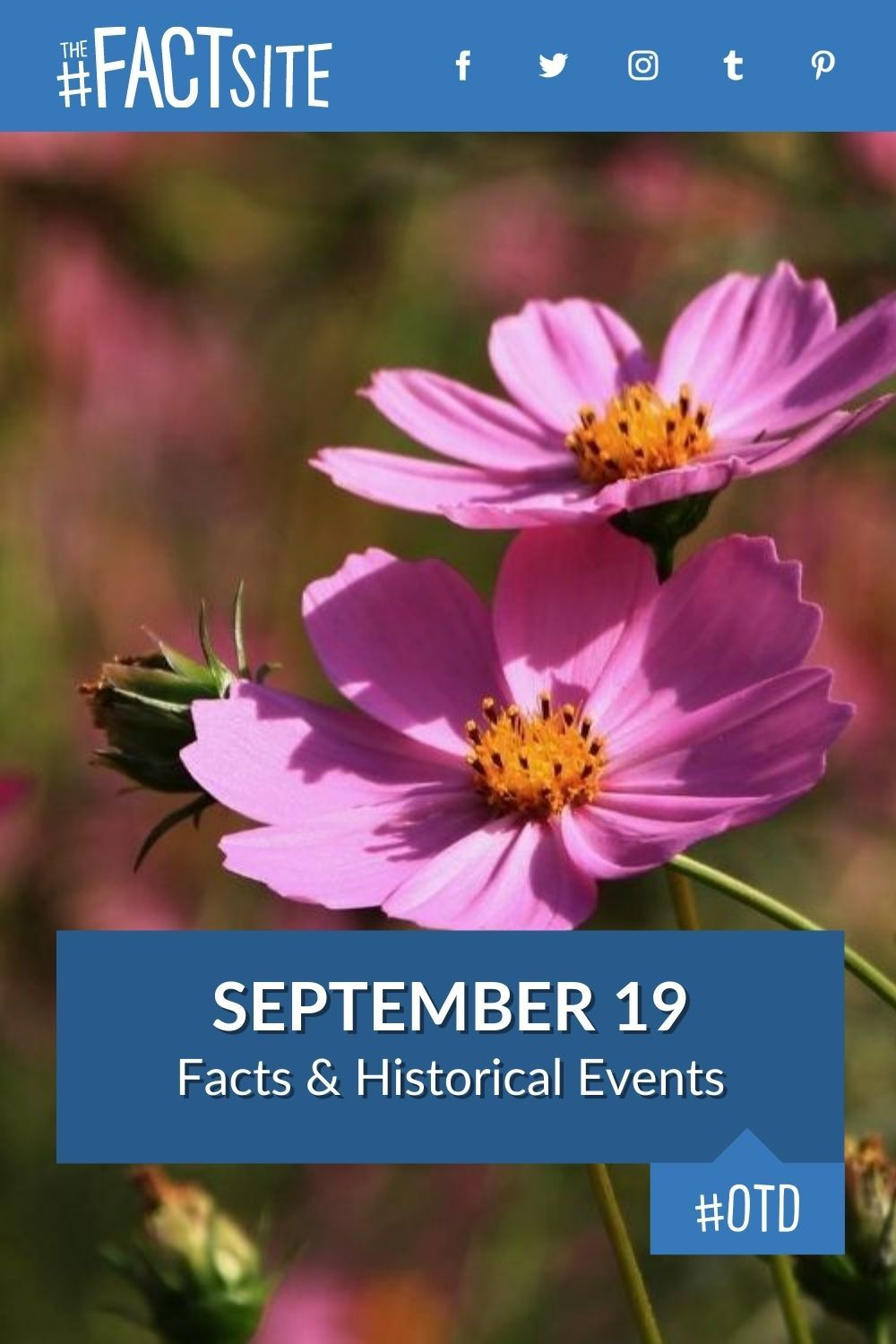 Facts & Historic Events That Happened on September 19