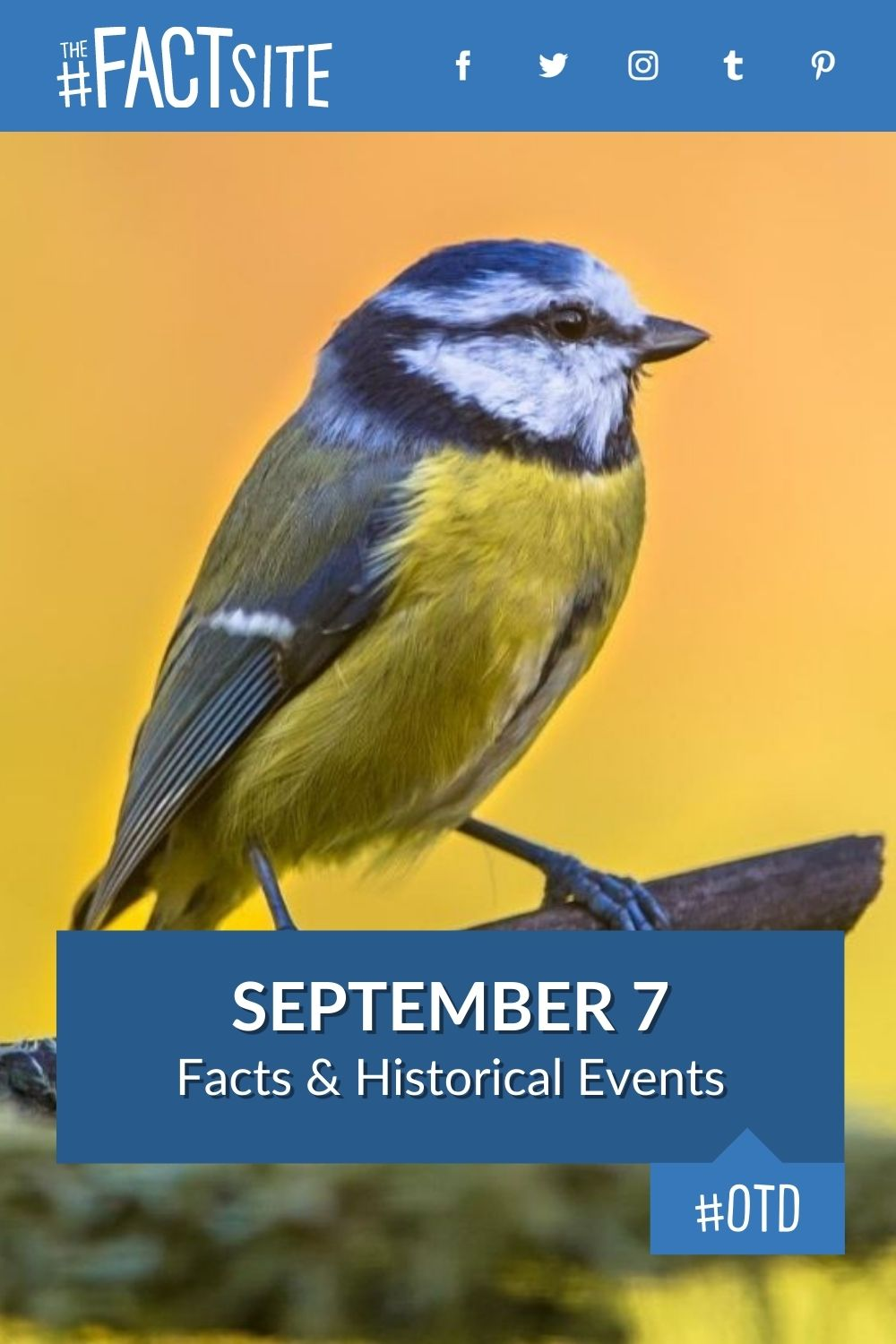 Facts & Historic Events That Happened on September 7