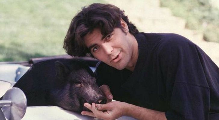 An old photo of George Clooney with his pet pig