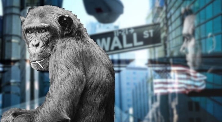 A Chimp that once ruled Wall Street