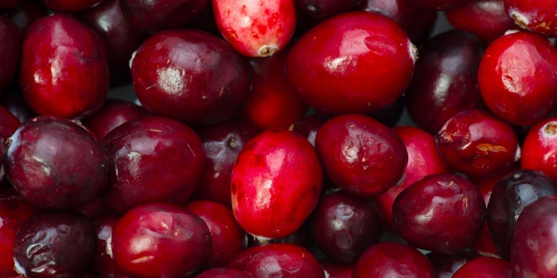 6 Health Benefits of Eating Cranberries