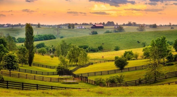 Scenic rolling grassy fields
