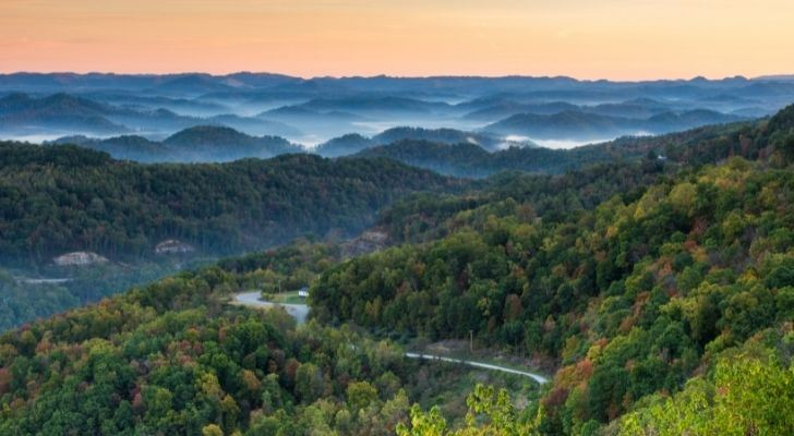 Rich green landscape of forest land and a river in Kentucky