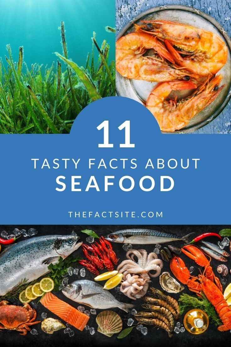 11 Tasty Facts About Seafood