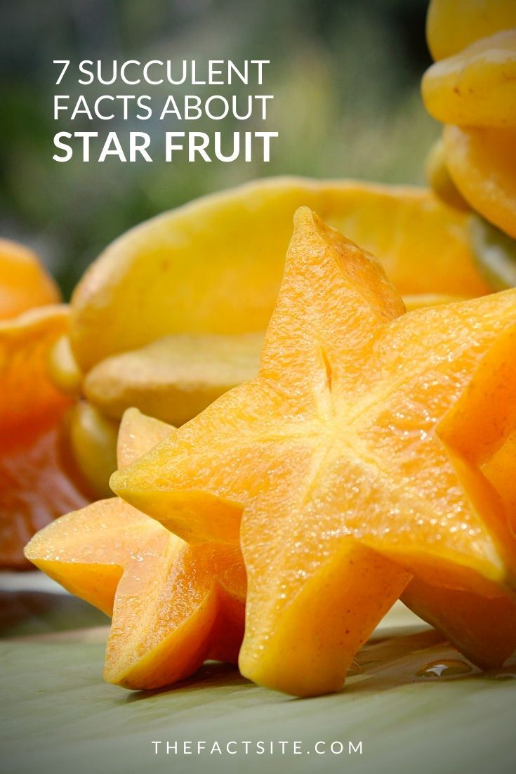 7 Succulent Facts About Star Fruit