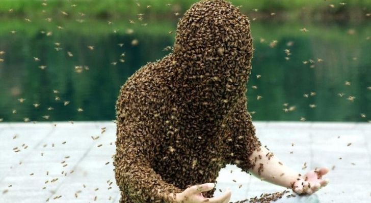 Ruan Liangming covered in bees