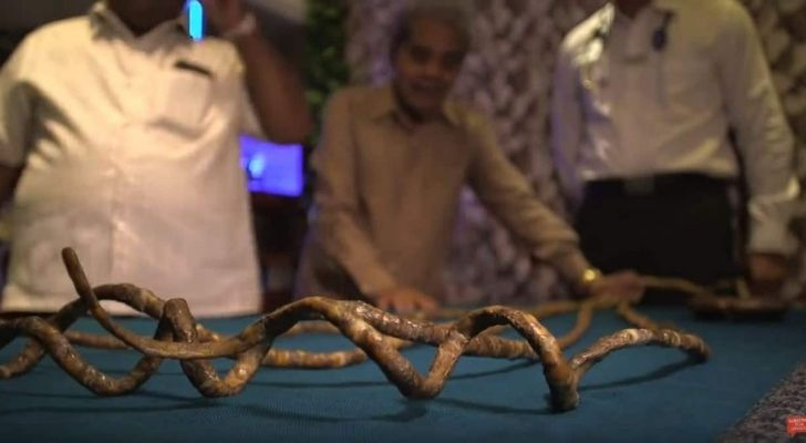 Shridhar Chillal's super long nails on a table
