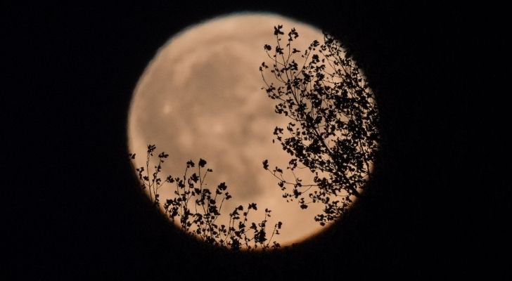 Is the Harvest Moon known as anything else?