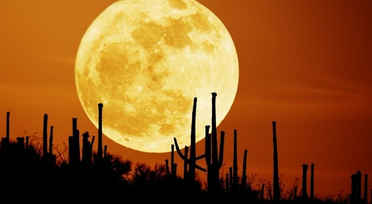 The Harvest Moon in a deep red sky
